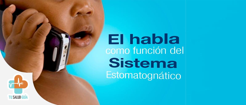 El habla como funcion del sistema estomatognatico