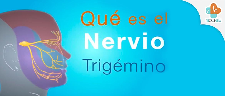 Que es el nervio trigemio